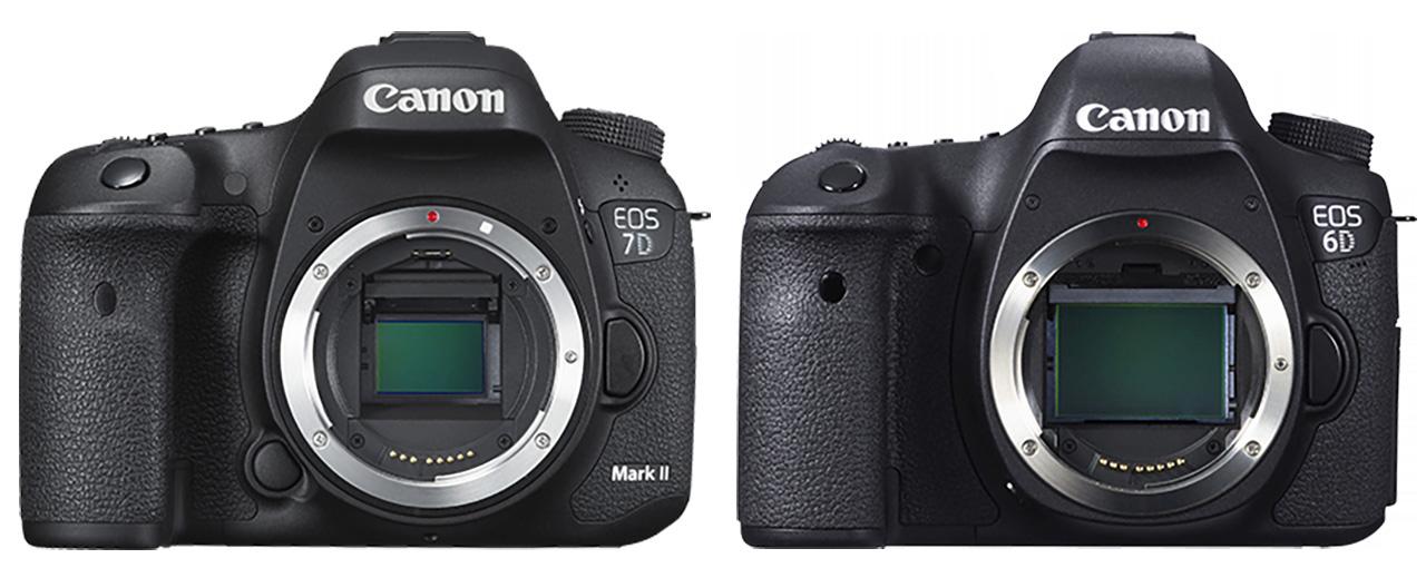 Canon EOS 7D Mark ii vs 6D