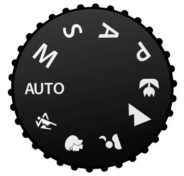 P, S, A, M, Auto